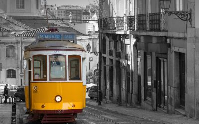 The 2022 IAPS Conference in Lisbon, Portugal, 4th to the 8th July 2022